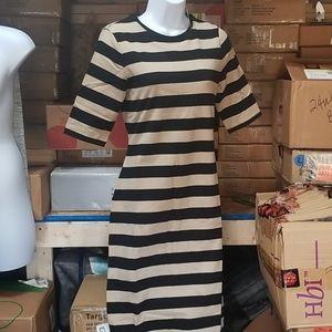 Crew neck knit dress